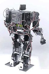 ヒューマノイドロボット『太極(たいち)』